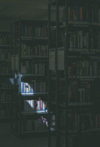 nbsg hauptpost 1004286 320x470 - Kantonales Bibliotheksgesetz